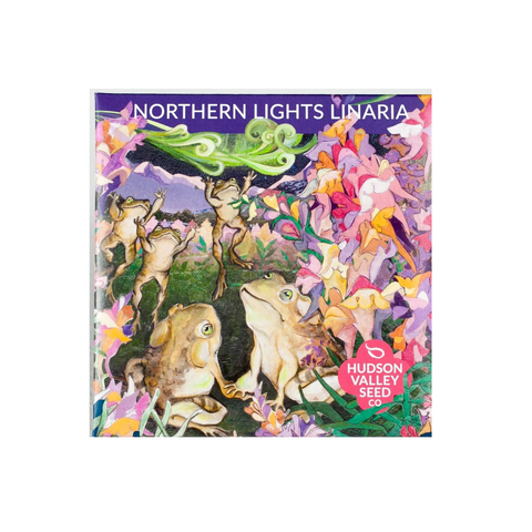Hudson Valley Seed Co Northern Lights Linaria