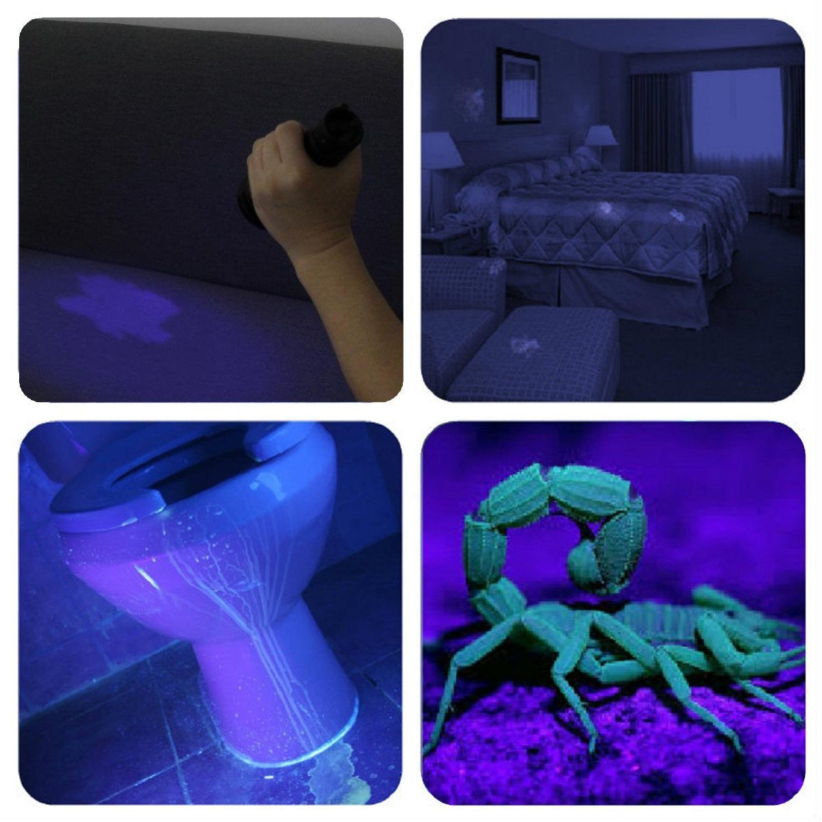 9 LED Ultraviolet UV Blacklight Flashlight - alltrolite