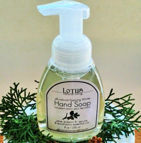 Winter Foaming Hand Soap