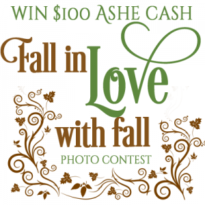 Fall in Love Photo Contest