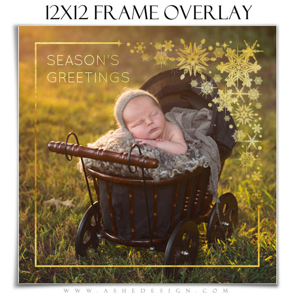 Customizable Designer Gems | Golden Snowflake Frame Overlay 12x12