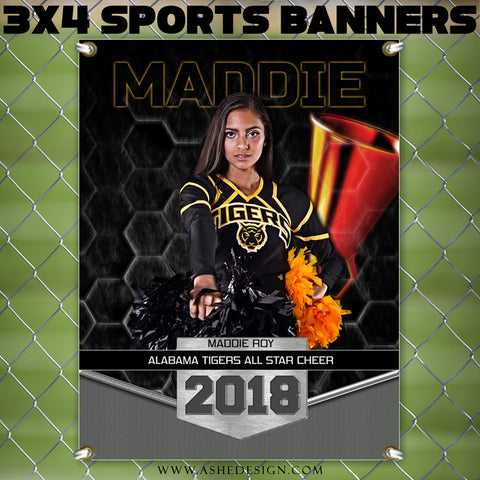 Ashe Design 3x4 Amped Sports Banner Photoshop Templates | Great Balls of Fire Cheer