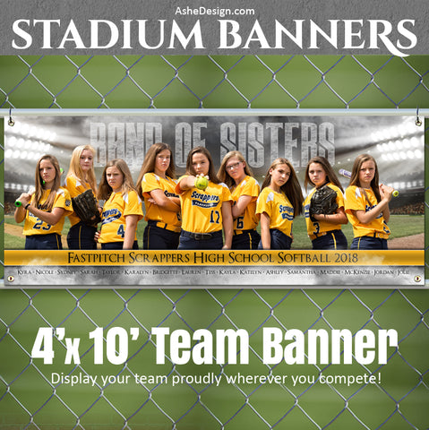 Baseball Softball Team Sports Banner 4x10