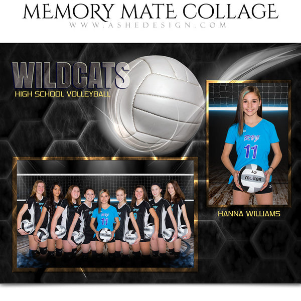 Ashe Design 8x10 Sports Memory Mate Honeycomb Volleyball HZ