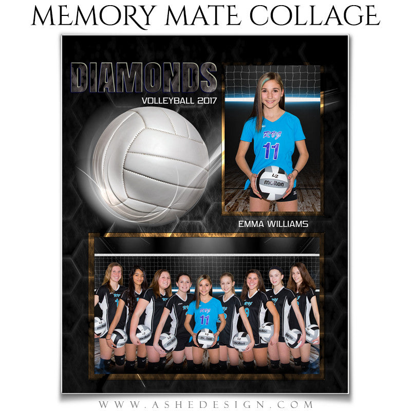 Ashe Design 8x10 Sports Memory Mate Honeycomb Volleyball