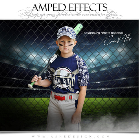Ashe Design 16x20 Amped Effects Sports Poster - Fenced In Baseball