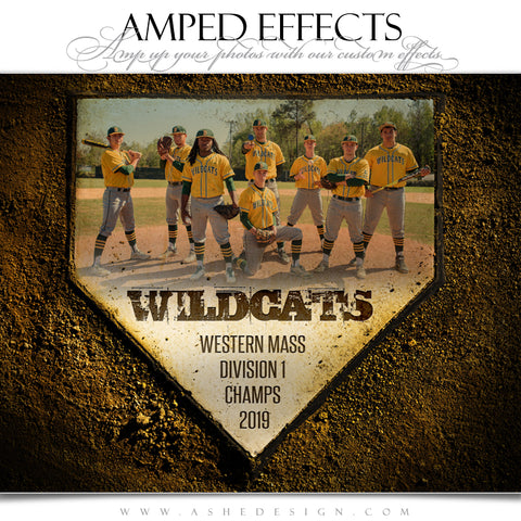Ashe Design 16x20 Amped Effects Sports Poster - Home Plate