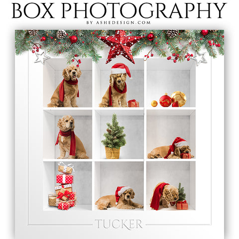 Box Session Photography - Christmas Garland Collage