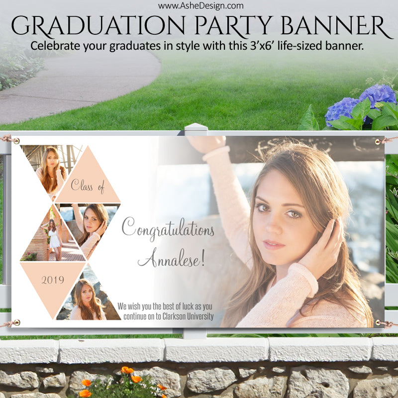 Ashe Design | Photoshop Template | Grad Party Photo Banner | 3'x6' Horizontal | Symmetry
