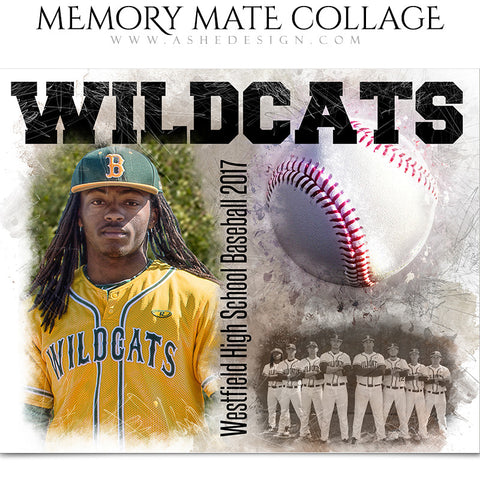 Sports Memory Mates - In The Zone Baseball