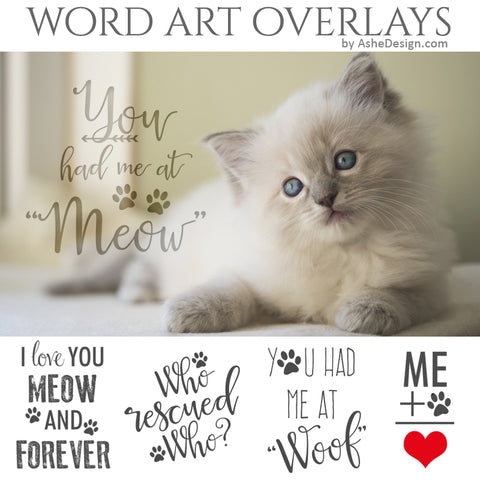 Ashe Design Word Art Overlays - Furbabies