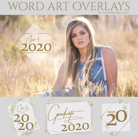 Ashe Design Word Art Overlays - Gold Leaf Grad