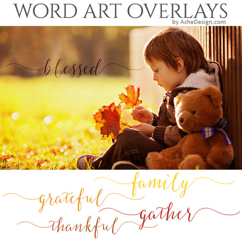 Ashe Design Word Art Overlays - Thankful