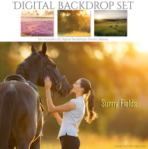 Digital Backdrop Set - Sunny Fields