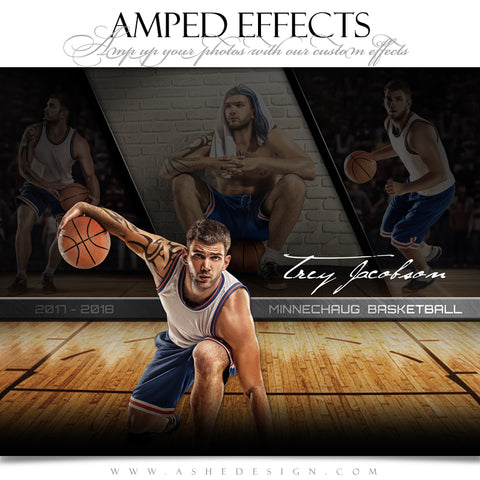 Ashe Design 16x20 Amped Effects Sports Poster - Faded Triptych - Basketball