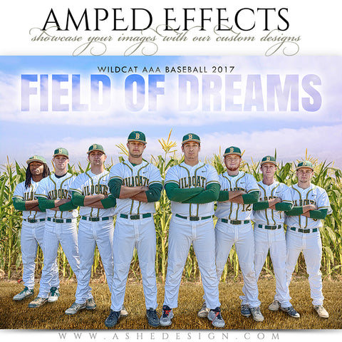 Ashe Design 16x20 Amped Effects Sports Poster - Field of Dreams 2