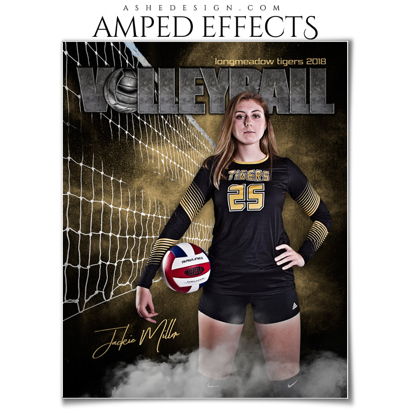 Ashe Design 16x20 Amped Effects -Rocked Volleyball