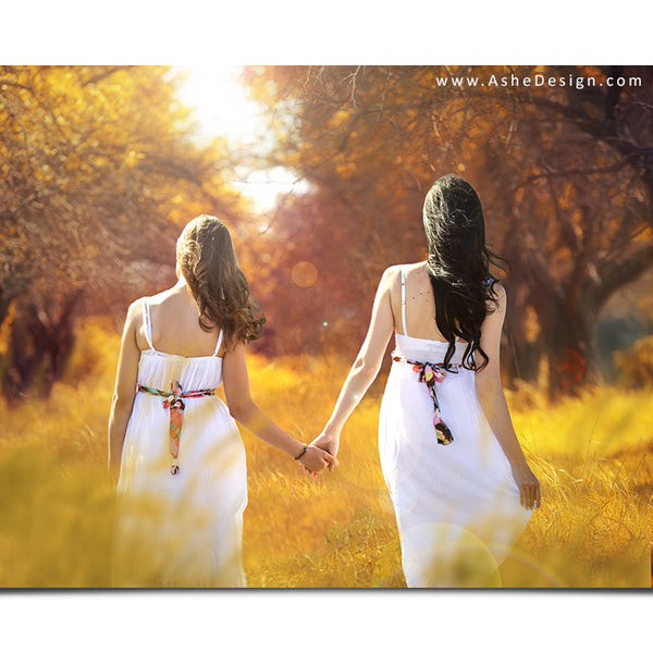 Ashe Design 16x20 Digital Backdrop Set - Autumn Meadow After