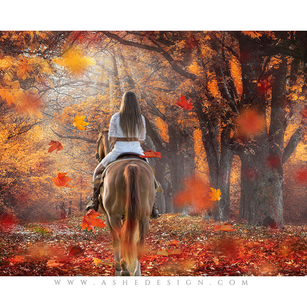 Digital Props 16x20 Backdrop Set - Autumn Mist