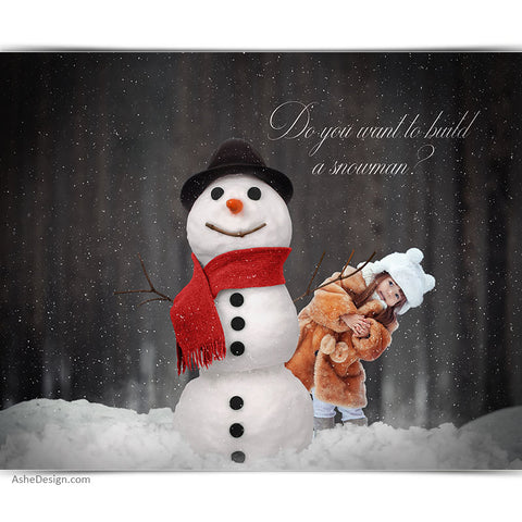 Digital Props 16x20 Backdrop Set - Build A Snowman