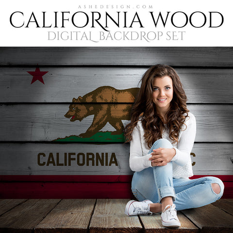 Digital Props - 16x20 Backdrops - California State Flags - Wood
