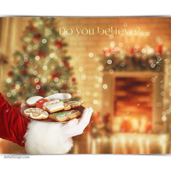 Digital Props 16x20 Backdrop Set - Cookies For Santa