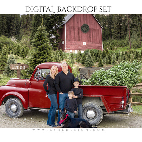 Digital Props 16x20 Backdrop Set - Country Road Christmas