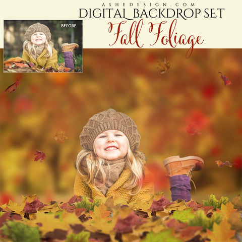 Digital Props 16x20 Backdrop Set - Fall Foliage