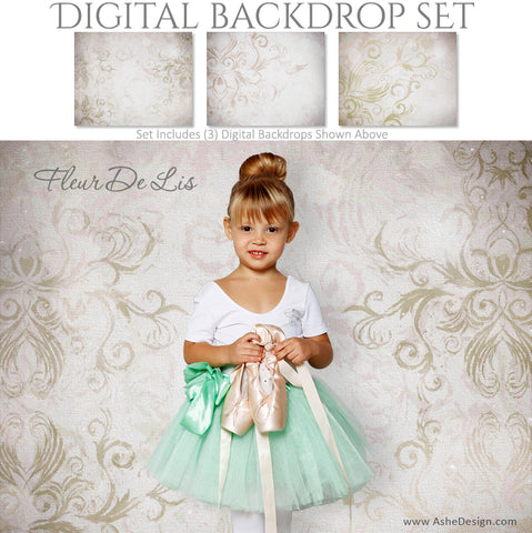 Ashe Design 16x20 Digital Backdrop Set - Fleur De Lis AFTER