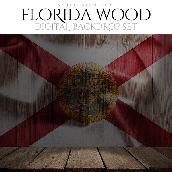 Digital Props - 16x20 Backdrops - Florida State Flags - Wood