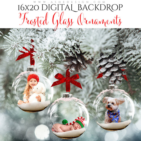 Digital Props 16x20 Backdrop Set - Frosted Glass Ornaments