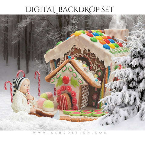 Digital Props 16x20 Backdrop Set - Gingerbread House