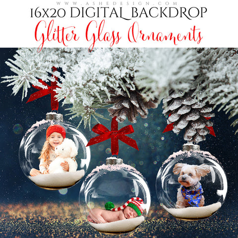 Digital Props 16x20 Backdrop Set - Glitter Glass Ornaments