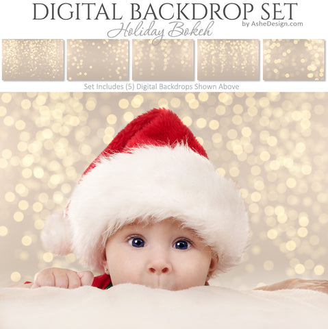 Digital Backdrop Set - Holiday Bokeh