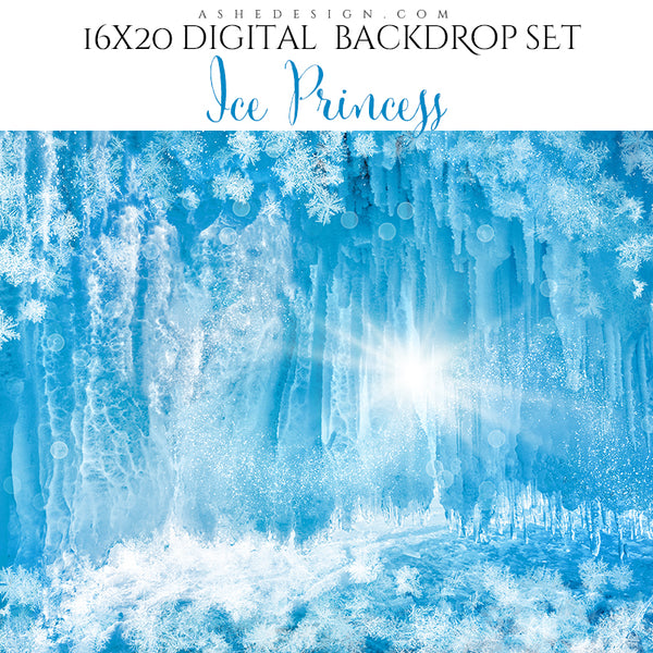 Digital Props 16x20 Backdrop Set - Ice Princess
