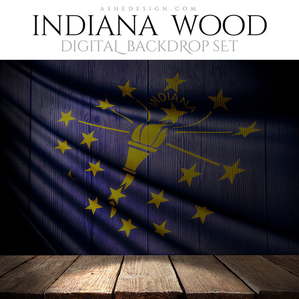 Ashe Design Digital Backdrop Indiana State Flag BEFORE