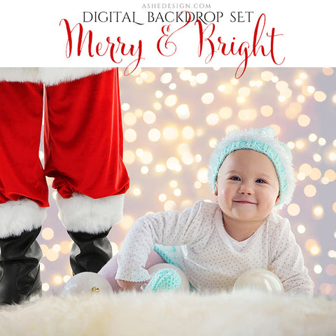 Digital Props 8x10 Backdrop Set - Merry and Bright