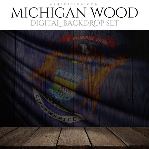 Digital Props - 16x20 Backdrops - Michigan State Flags - Wood