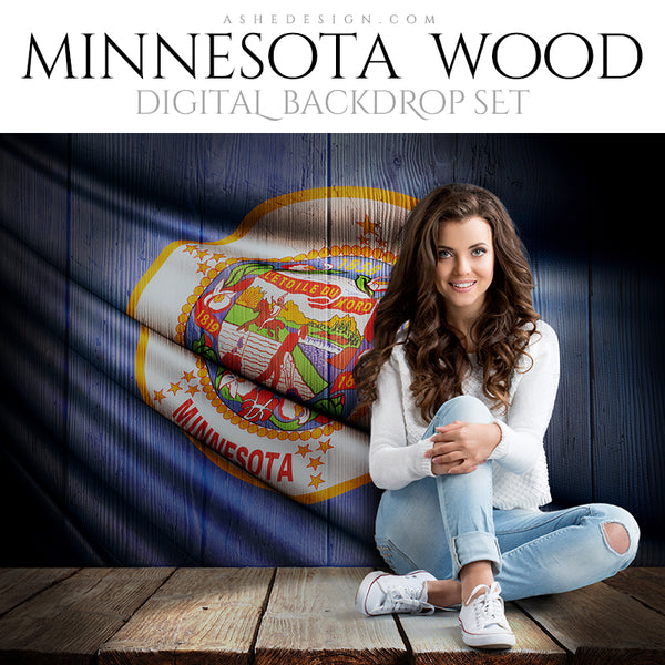 Ashe Design Digital Backdrop State Flag - Minnesota AFTER