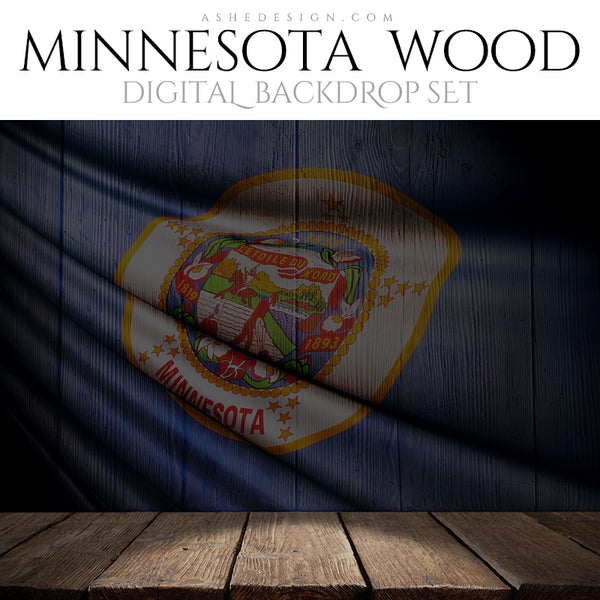 Ashe Design Digital Backdrop State Flag - Minnesota BEFORE