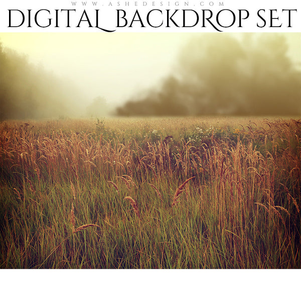 Digital Props 11x14 Backdrop Set - Morning Dew