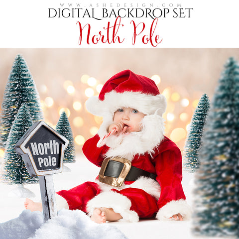 Digital Props 16x20 Backdrop Set - North Pole