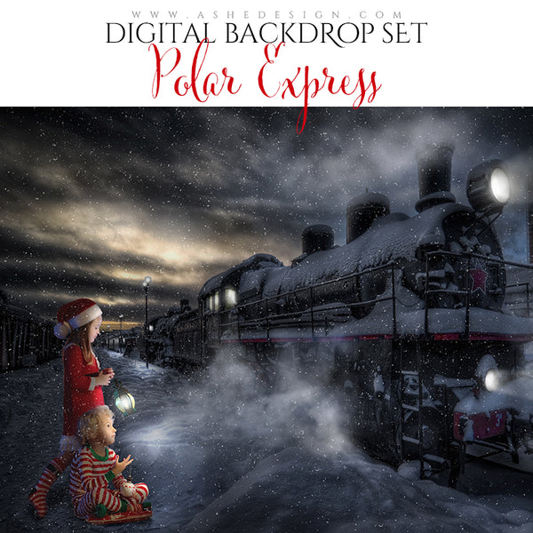 Digital Props 16x20 Backdrop Set - Polar Express