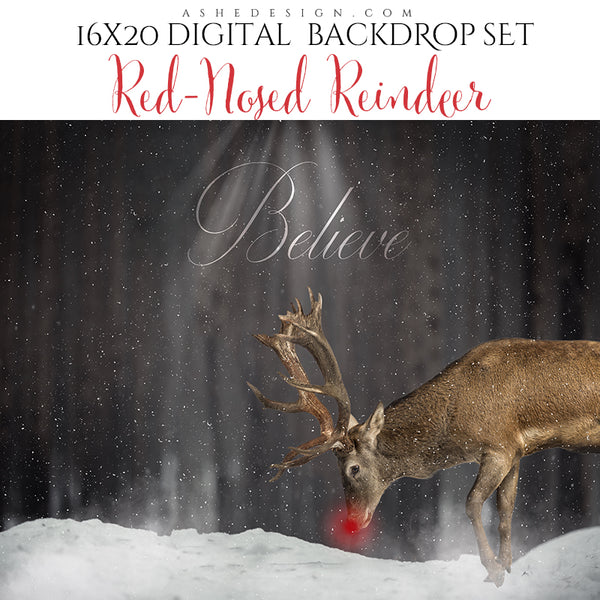 Digital Props 16x20 Backdrop Set - Red-Nosed Reindeer