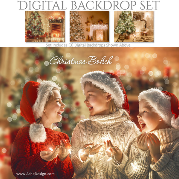 Ashe Design 16x20 Digital Backdrop Set - Christmas Bokeh AFTER