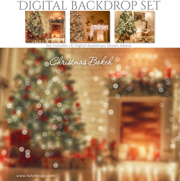 Ashe Design 16x20 Digital Backdrop Set - Christmas Bokeh BEFORE