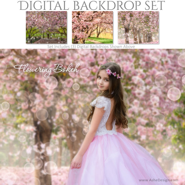 Ashe Design 16x20 Digital Backdrop Set - Flowering Bokeh AFTER