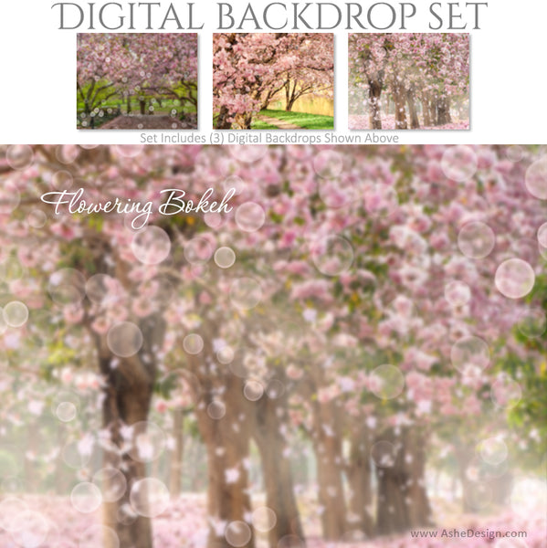 Ashe Design 16x20 Digital Backdrop Set - Flowering Bokeh BEFORE