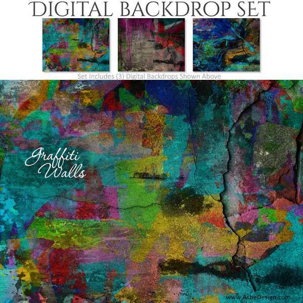 Ashe Design 16x20 Digital Backdrop Set - Graffiti Walls BEFORE