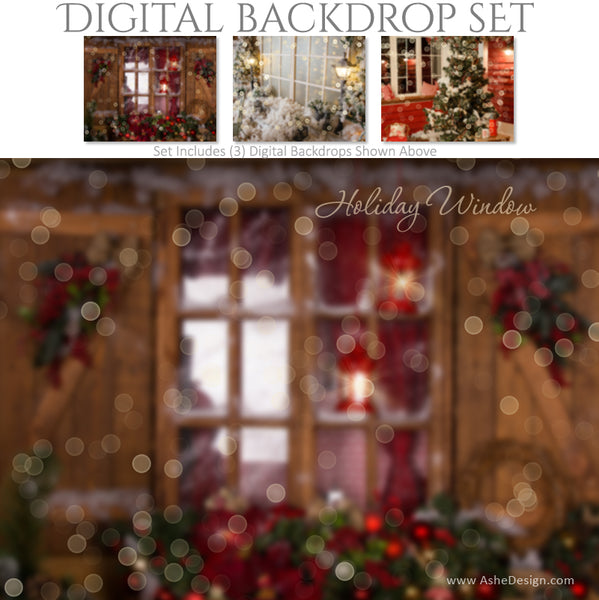 Ashe Design 16x20 Digital Backdrop Set - Holiday Window BEFORE
